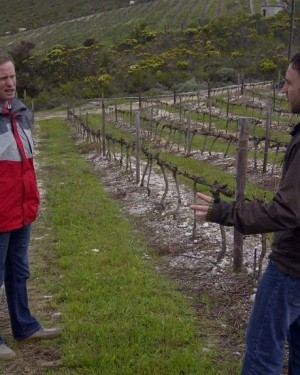 Discussing about Terroir with the winemaker of La Vierge SA-copie